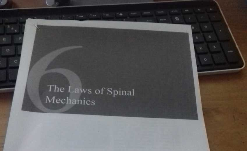 Spinal mechanics!